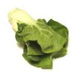 Kaupsta Bok choy (źródło: foodsub.com)