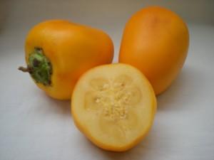 Owoc Cocona