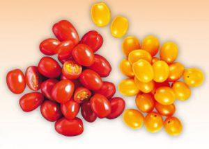 Pomidory papryczkowe (źródło: biedronka.pl)