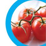 Tartaletki z pomidorami i bazylią (źródło: annaolson.ca)